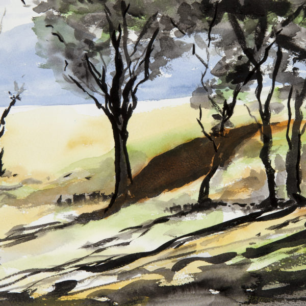 PLAY OF LIGHT ON THE GOLDFIELDS by Jim Keays ~ A framed original watercolour